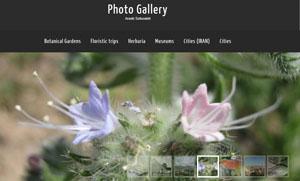 Photo Gallery !
